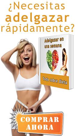 Tapa del libro de dietas