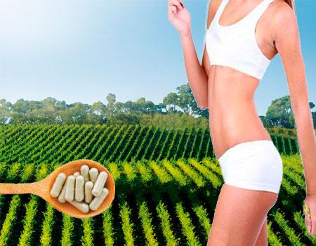 Pastillas naturales para bajar de peso