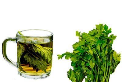 perejil y té de perejil para adelgazar