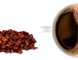 Café termogénico quemagrasa