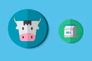 Lactosa de vaca